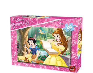 Disney 24pcs Princesses A+B Ass 2