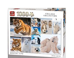 Generic 1000pcs Arctic Life